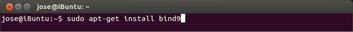 El primer paso es abrir una terminal (Ctrl + Alt + T) y escribimos este comando para instalar bind9, ese es el servidor DNS
